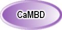 CaMBD