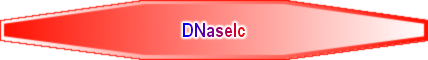 DNaseIc