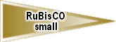 RuBisCO_small